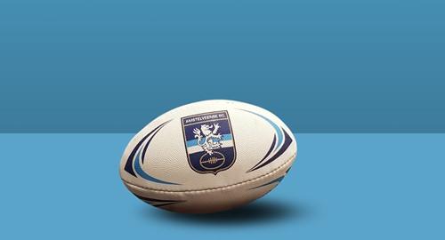 ARC Rugbybal Mini (15cm)